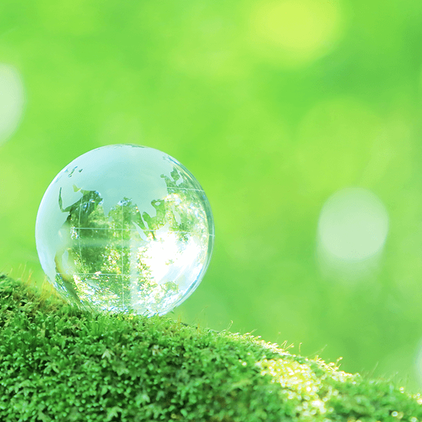 Image of green grass with a crystal globe